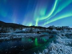 Aurora in Straumsbotn, (Reidar Trekkvold) Tags: auroraborealis kvfjord landscape natur nature nordnorge norway nothernlights troms vinter winter fujifilm xt2 xf 1024 ois straumsbotn is ice
