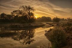 Sunny Misty Morning ... (Claudia Brockmann) Tags: landscape landschaft sunrise sonnenaufgang sonnenlicht misty fog foggy neblig morgennebel river fluss regnitz pettstadt natur nature