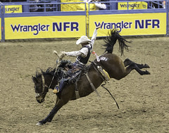 024693628-83-2016 NFR Cowboy Riding Saddle Bronc Riding-2 (Jim There's things half in shadow and in light) Tags: 2016 canon5dmarkiv canon70200lens lasvegas nationalfinals nevada rodeo thomasandmack unlv action animal cowboy december sports saddlebronc bucking horse