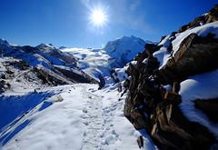 Swiss Alps at Gornergrat, Switzerland (` Toshio ') Tags: toshio switzerland gonergrat zermatt swissalps swiss snow mountain nature fujixe2 xe2 sun footprints rocks trail hiking path