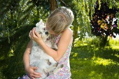 ? (dogsecrets.ru) Tags: dog   doglovers