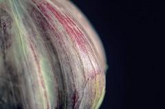 Very close (GeryLee) Tags: texture pastel depthoffield tabletop lighting macro extensiontube garlic food blackbackground
