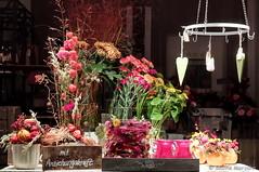 Bunte Pracht mit Anziehungskraft (Sockenhummel) Tags: fuji x30 fujifilm finepix fujix30 blumenladen laden schaufenster blumen dekoration fenster flowershop window shopwindow colourful flowers