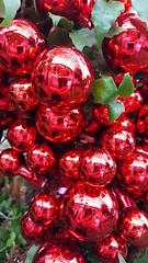 #shinyballselfie (armykat) Tags: shinyballselfie ornaments holiday christmas longwoodchristmas longwoodgardens kennettsquarepennsylvania selfie reflection
