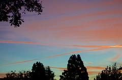 Colorful Contrails (hectic skeptic) Tags: camarillo california markamorgan sunrise early winter colorful
