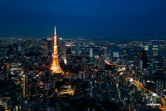 (Ivan Wan ) Tags:      japan travel traveling tokyo tokyotower  a7rm2 a7r2 a7 a7m2 sony sonya7r2