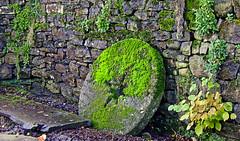 Mill Wheel. (wontolla1 (Septuagenarian)) Tags: downham gisburn lancs lancashire barn assheton arms pub walking hiking hike