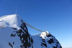 "Le ""Peak Walk"" (Iris_14) Tags: alpes swissalps glacierdesdiablerets lesdiablerets peakwalk scexrouge montagne passerelle romandie pontsuspendu suisse schweiz switzerland glacier3000 alpesvaudoises hngebrcke"