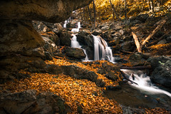 Dark Hollow Waterfall. Shenandoah National Park (Vladimir Grablev) Tags: view autumn foliage season water stream hollow fall litter leaves shenandoah national waterfall dark hiking trail creek park nobody cave rocks cascades syria virginia unitedstates us