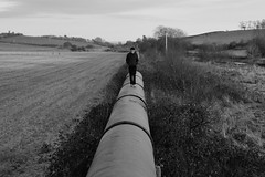 Pipe Dream (eyesomepics) Tags: ayrshire drybridge pipe pipeline field fields landscape figure walking balance