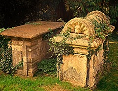 Nature is Powerful! (springblossom3) Tags: church religion graves grave worship nature saint marys chipping norton cotswold architecture ancient relic history churches