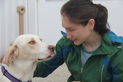 "Johanna and the dog • <a style=""font-size:0.8em;"" href=""http://www.flickr.com/photos/27717602@N03/9094131194/"" target=""_blank"">View on Flickr</a>"