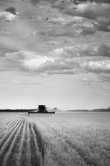 Harvest Time (Jess-Turner) Tags: summer canon wheat harvest australia header crop nsw lakecowal 1000d
