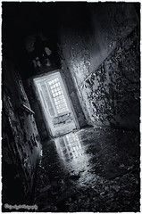 Light through yonder window .. (sparkeyb) Tags: light blackandwhite bw abandoned broken window wet water glass hospital reflections mono blackwhite nikon closed decay sigma monotone creepy textures urbanexploration nhs drips smashed rotten mould peelingpaint 1020mm puddles asylum derelict essex shards colchester decaying damp textured crumbling mental mentalhospital urbex mouldy severalls monotonal d7000 silverefex sparkeyb