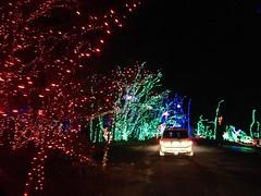 IMG_6184 (Ray Moore- RAR Studios) Tags: christmas december 2013 shadybrookfarm