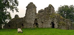 Pendragon Castle,Cumbria-2 (Kev's.Pix) Tags: castle misty ruins sheep dale country cumbria pendragon countryscene mallerstang historicbuilding