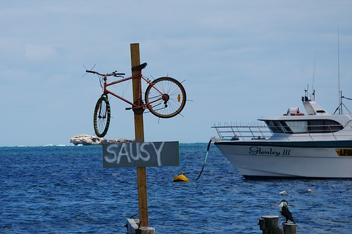 Sausy bike