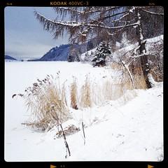 Haidersee (nikkortumblr) Tags: noflash kodak400film uploaded:by=flickrmobile flickriosapp:filter=nofilter 2evcolorskoparlens