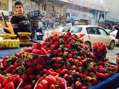 Hewler kurdistan erbil (Kurdistan Photo كوردستان) Tags: uploaded:by=flickrmobile flickriosapp:filter=nofilter