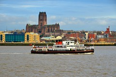 SNOWDROP and Liverpool Cathedral (Ugborough Exile) Tags: uk england liverpool nikon 2014 nikonpassion d7000