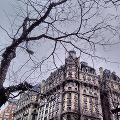Winter is going (SuperSamPhotography) Tags: nyc newyorkcity autumn winter sky urban usa cloud newyork storm fall skyline clouds trash square centralpark manhattan squareformat cloudporn iphoneography instagramapp uploaded:by=instagram foursquare:venue=4b2da0ddf964a520c9d924e3