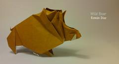 Wild Boar (Laangen) Tags: berg pig roman rainer papier boar schwein diaz wildschwein porco jabal sanglier javali  ln rng laangen