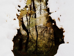 like a large droplet (♥Adriënne - catching up......) Tags: birthday reflections zeeland textured oostkapelle winterinthenetherlands panasonictz5 addyvanrooij ♥adriënne demantelingen