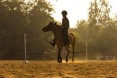 IMG_8304 (Shiv 'n) Tags: boy horse training ride redearth pondicherry auroville ppc horseride horsetraining puducherry