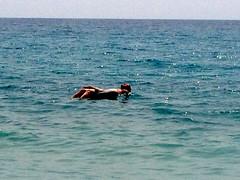 Dobberen in de zee