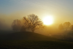 Sun in Fog (Peas And Papillons) Tags: bigmomma 15challengeswinner storybookwinner