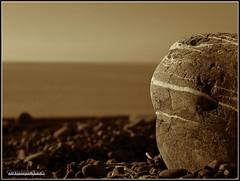 Week 20 : Minimalism {EXPLORE} (Lyndon (NZ)) Tags: newzealand beach nature sepia blackwhite fuji gimp coastal southisland kaikoura weeklytheme xs1 week20theme fujifilmxs1 52weeksthe2014edition week202014 weekstartingwednesdaymay142014