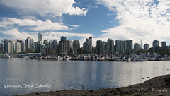 View of downtown Vancouver from Stanley Park (SonjaPetersonPh♡tography) Tags: park canada fountain birds vancouver boats nikon britishcolumbia ducks seawall stanley stanleypark mallard sailboats canadaplace greatblueheron lostlagoon coalharbor rosegardens vancouverharbour vancouverskyline stanleyparkseawall vancouverpanorama d5200 stanleyparkrosegarden nikond5200