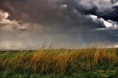 Nuvoloni, pioggia e vento (Gianni Armano) Tags: rain clouds photo san foto image wind natura pioggia gianni vento alessandria temporale giu