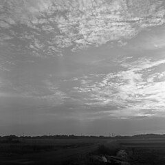 Morning sky (odeleapple) Tags: mamiya c330 mamiyasekor 65mm neopan100acros film bw sky cloud morning