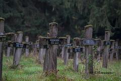 RIP (jeannette.dejong) Tags: belgie bruin groen grijs zwart wit hdr