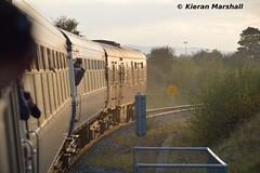 Cravens at Limerick Junction Direct Curve, 22/10/16 (hurricanemk1c) Tags: rpsi westernexplorer 1705limerickconnolly railways railway train trains irish rail irishrail iarnrd ireann iarnrdireann 2016 railwaypreservationsocietyofireland craven limerickjunction mark1 brvan gsv 3173