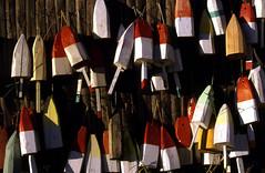 Hanging Buoys (TPorter2006) Tags: tporter2006 maine buoys wooden october 2002 colofrul buoyant