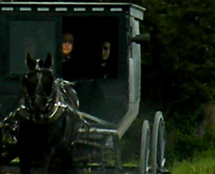 American Gothic - versionII (coollessons2004) Tags: amish illinois horse buggy