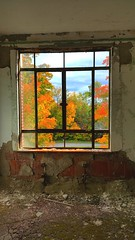 Color of Life just outside. (bloesch14) Tags: saratoga fall abandonded window