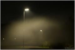 misty evening (HP017504) (Hetwie) Tags: straatlantaarns brouwhuis avond mist evening wijkpark fietspad streetlight helmond noordbrabant nederland