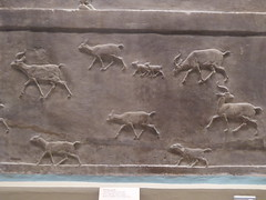 Fleeing Ibex (Aidan McRae Thomson) Tags: nineveh relief britishmuseum london assyrian sculpture mesopotamia ancient
