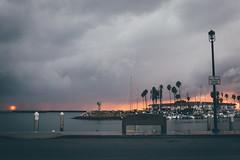 Rainy Harbor (riknor) Tags: rain rainy oceanside california socal southern ocean palm trees sunset clouds dark vsco leica leicac bench sign boats