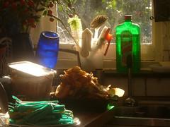 Pasta experiment 3 (boula.matari) Tags: pasta dough blue green pâtes tagliatelle dry drying kitchen cuisine sunray rayon de soleil window sill fenêtre évier sink bottle translucent transparent translucide épluchures compost