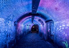 Neon Utrecht (Martijn van Sabben) Tags: neon light neonlight urban tunnel street graffiti lines leadinglines tunnelvision holland defotoblogger foto photo photography ngc nederland olympus getolympus