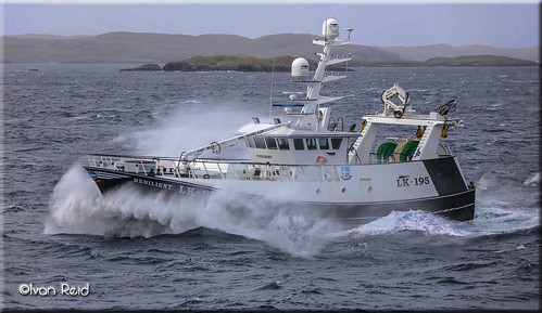Resilient LK195 heads towards the market in Lerwick