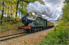 5619. Golden Valley autumn …………. (Alan Burkwood) Tags: mrc goldenvalley gwr collett 56xx class 5619 steam locomotive autumn