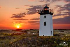 Dune Flora (Mike Blanchette) Tags: capecod coast lighthouse massachusetts provincetown seacoast seascape sunset woodend autumn coastal usa