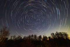 Stacked Fish (Notkalvin) Tags: stars star startrails night nightphotography outdoor swamp longexposure stacked notkalvin mikekline notkalvinphotography michigan wellston nightsky noshootingstars noplanes nopeople landscapeorientation landscape deadtrees trees sky fisheye