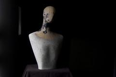 Dummy torso Cut July 2016 copy (Jeremy Webb Photography) Tags: jeremywebb 2016 dummy torso sidelight sculptural daylight windowlight