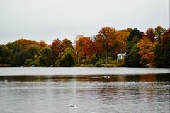 Autumn at Furesø lake (Jaedde & Sis) Tags: furesø landscape lakescape lake autumn